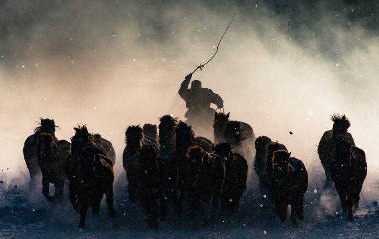 Travel Photographer of the Year 2016: So sehen die Sieger aus
