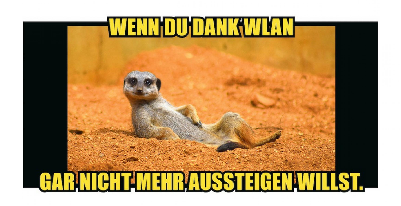 Warum die Hamburger Hochbahn in der neuen Kampagne auf Memes setzt