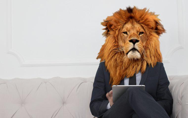 Die Kolumne des Business Lion: Hört auf, mich zu motivieren!