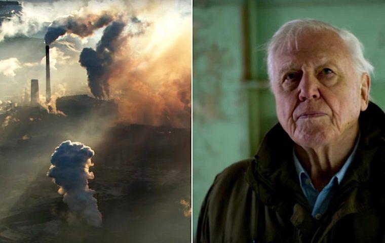 Die neue Netflix-Doku über David Attenborough ist ein bewegender Appell, unsere Erde zu retten
