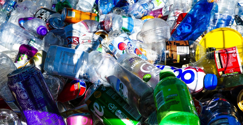 Im Kampf gegen die Plastikflut: Neues Wunder-Bakterium soll Kunststoff schneller zerlegen können
