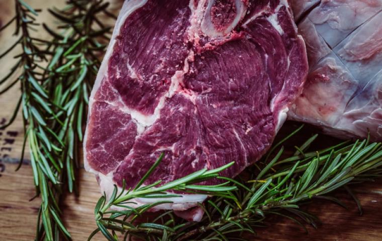 Kolumne: Nichts geht über ein gutes Stück… Laborfleisch?!