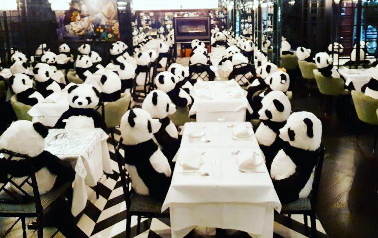 """Restaurant setzt mit Kunst-Installation """"Panda-Mie"""" ein Statement gegen den Teil-Lockdown"""