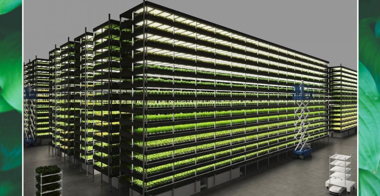 In Dänemark entsteht eine riesige Vertical Farm