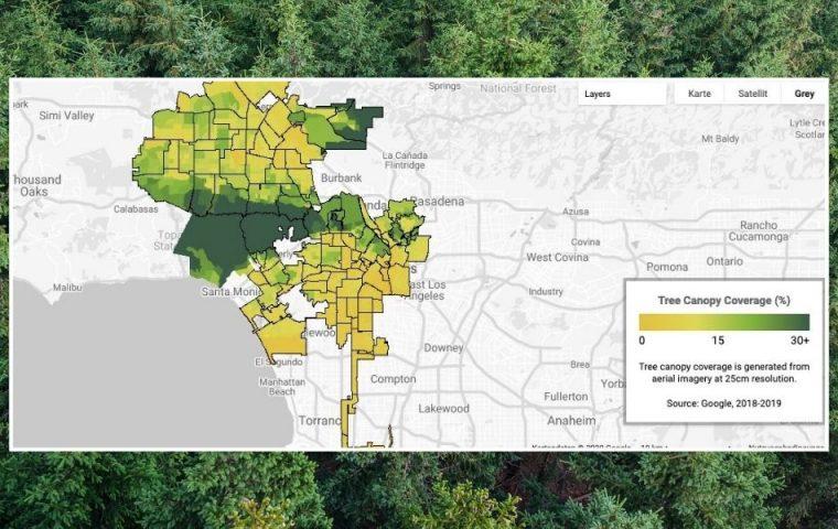 """Googles """"Baumkronenlabor"""" weiß, wohin Bäume in Städten gepflanzt werden müssen"""