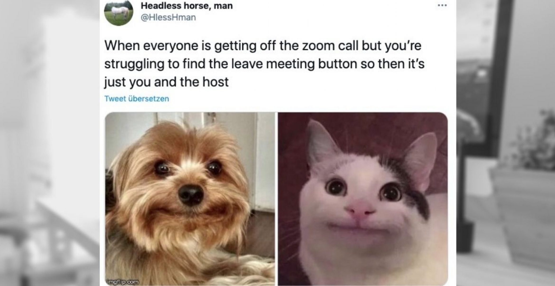 Zoom-Meetings machen uns zu seltsamen Menschen