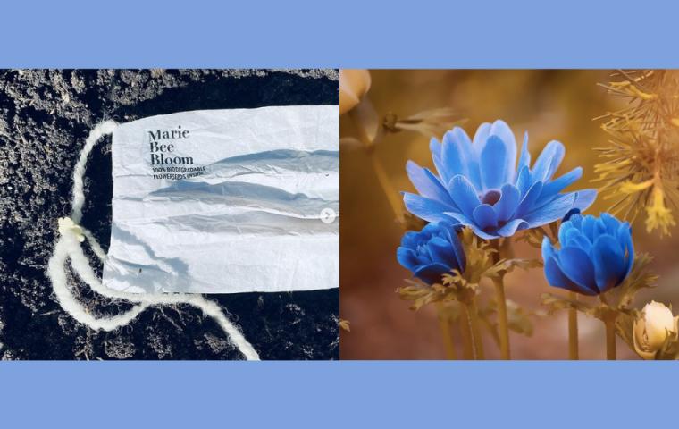 Aus dieser biologisch abbaubaren Maske sprießen Blumen, wenn sie vergraben wird