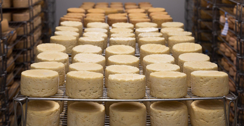 Ein Kloster in Frankreich hat an einem Tag mehr als zwei Tonnen Käse versteigert