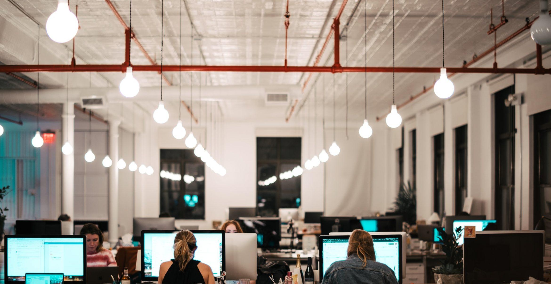 Nachhaltigkeit im Büro: So arbeiten wir in Zukunft klimaneutraler