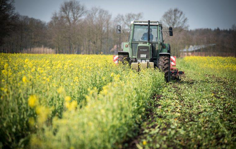 Weil sein Traktor vorbei musste: Landwirt versetzt Grenzstein und lässt Frankreich schrumpfen