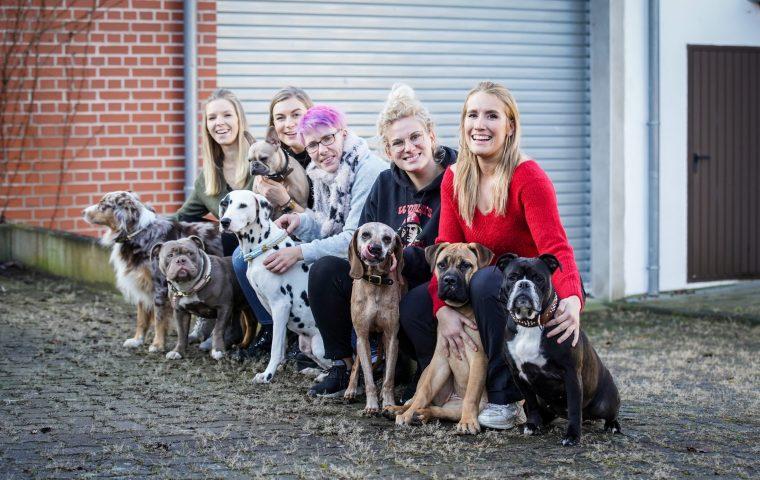 Hunde im Büro? Hier kommen Tipps von der Gründerin des Online-Shops Tierliebhaber