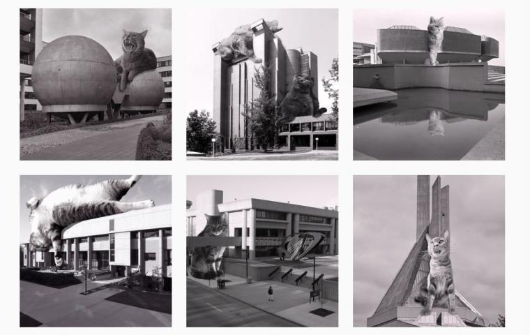 """Cats of Brutalism"": So adorable hast du moderne Architektur noch nie gesehen"